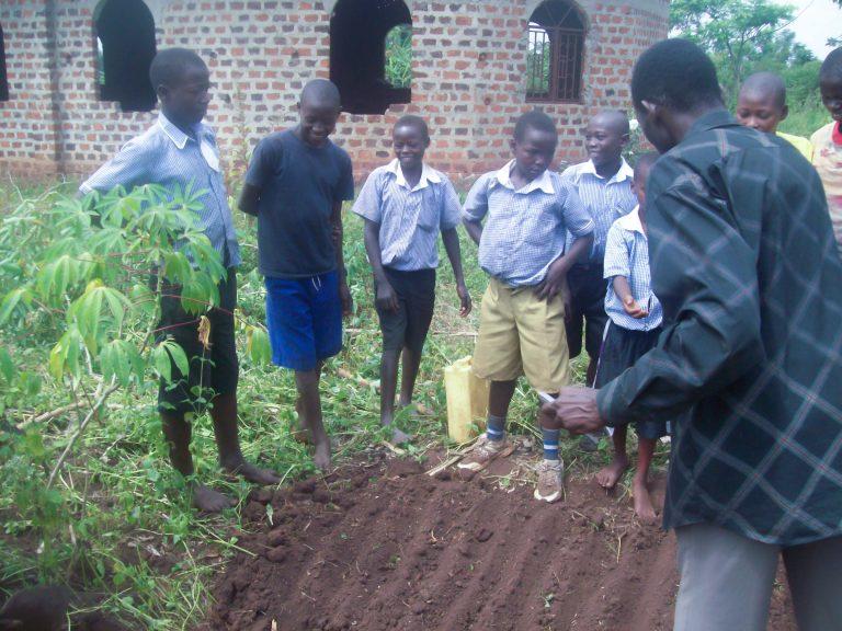 Tree planting is schools in Uganda